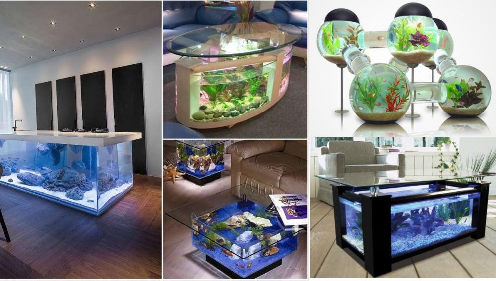 Úžasná akvária, která může mít doma každý