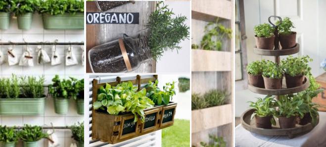 20+ nápadů jak vytvořit bylinkovou zahrádku v kuchyni