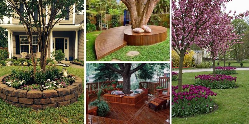 17 nápadů na originální úpravu okolí stromů